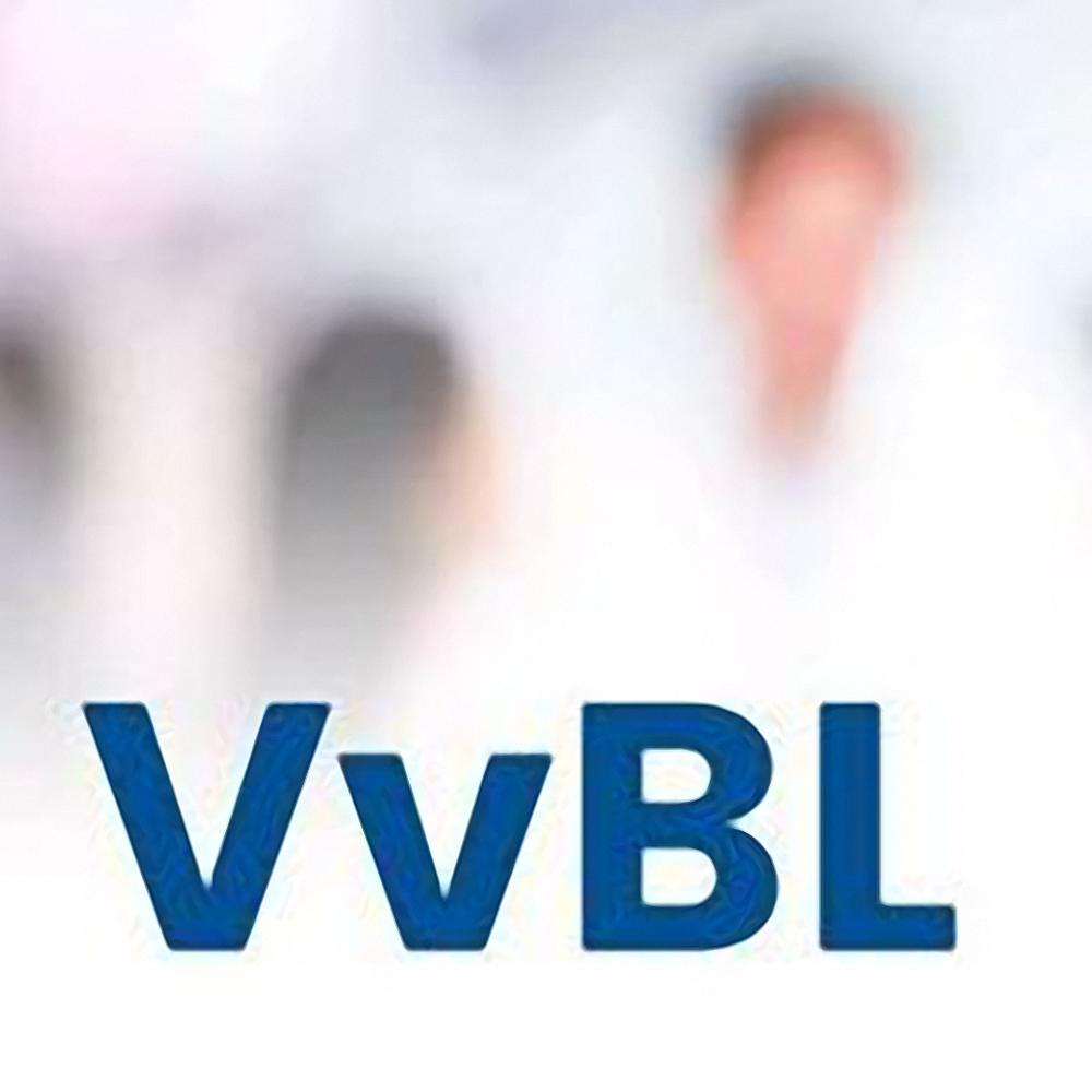 Vereniging van Bedrijven Lemmer e.o. (VvBL)